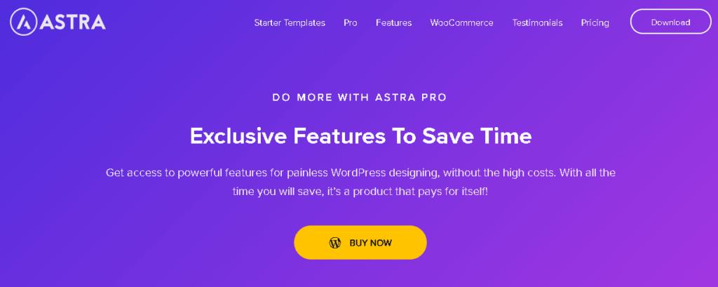 Astra Pro Paid WordPress Theme