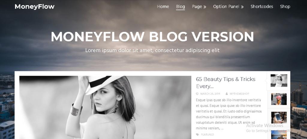 MoneyFlow Paid WordPress Theme