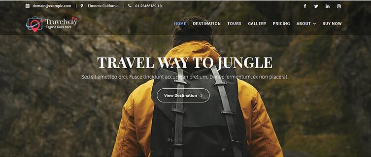 Travel Way Paid WordPress theme